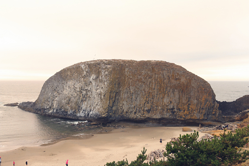 The Seal Rock